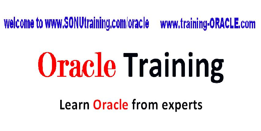 Oracle R12 Courses Training for Certification in Orange